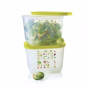Tupperware Fridgesmart Small Deeps